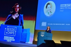 Diana Battaggia, UNIDO ITPO Italy