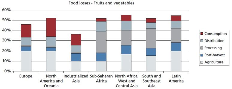 """Global Food Losses and Waste"", FAO 2011"