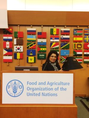 FAO - Rome HQ High-Level Meeting on RPW 29-31 March, 2017