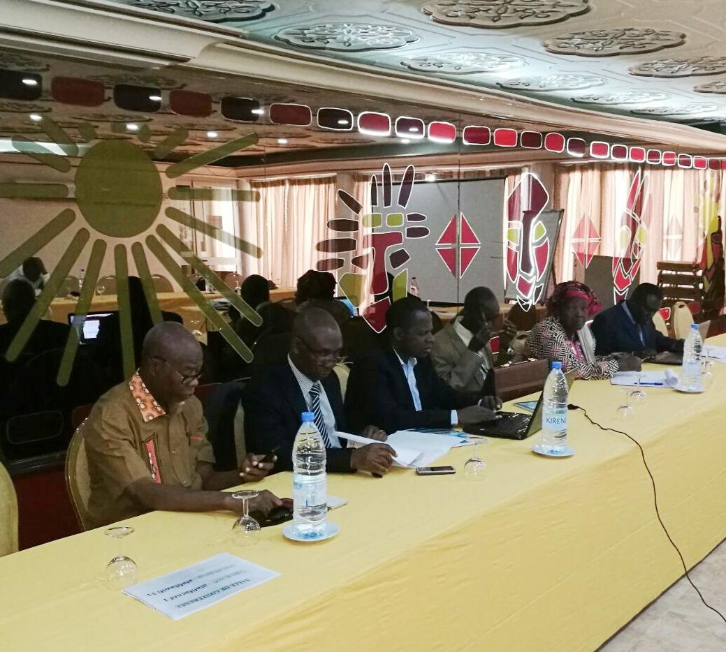 UNIDO ITPO Italia all'incontro del comitato regionale del progetto pesca in Africa occidentale