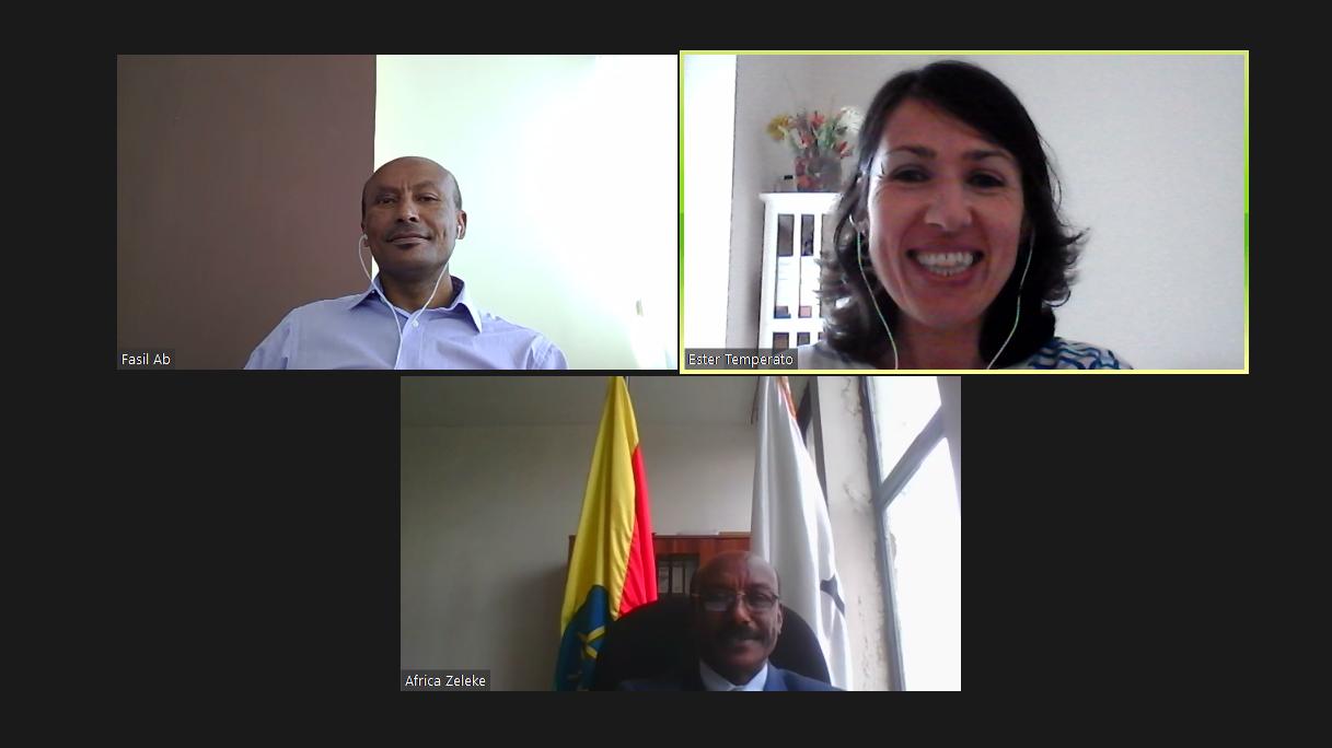 FIPEE: incontro con la Camera Etiope delle Associazioni Settoriali
