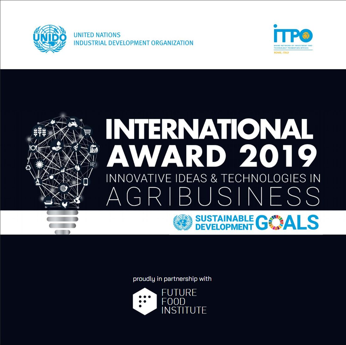 The Official publication of International Award 2019 is online!