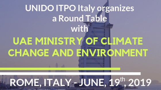 UNIDO ITPO Italy hosts a Round table on environmental issues with UAE Ministry of Climate Change and Environment